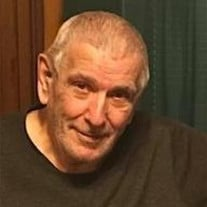 Mario N. Fiacchi