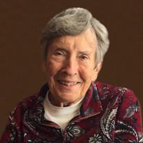 Shirley Siefkin Apt