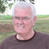 Larry L. Stavedahl