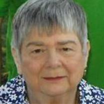 Sue C. Dobson