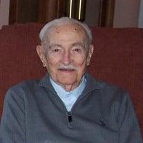 Mr. Rodolphe Emile Viens