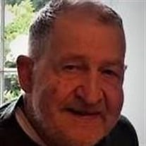 Mr Dennis Edward Schehl