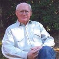 David Austen King