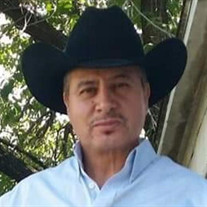 Jose Antonio Perez-Ortiz