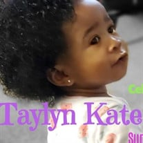 Taylyn Kate Williams