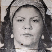 Maria Antonieta Priolo