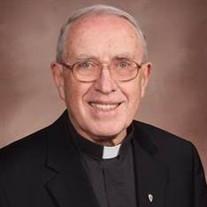 Rev. Msgr. Timothy Ryan