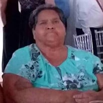 Guadalupe Andrade