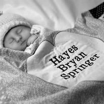 Hayes Bryan Springer