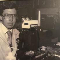 Dr. Stephen Albert Lewis Ph.D.