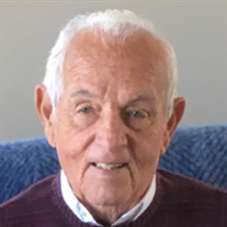 Richard J. Trizzino