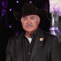 Jose Luis Aldava