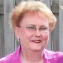 Sally Ann Vink-Stutesman
