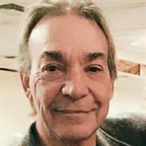 Michael L Collins