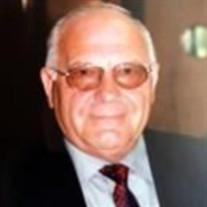 Mr. Elmer Medgyaszay