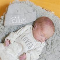 Elliot Lee Reiser