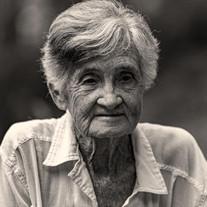 Joan N. Isbell