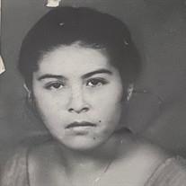 Maria Alicia  Campos Guerrero