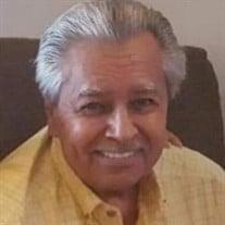 Mr.  Ervin Victor Green