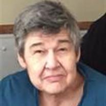 Susan L Schnerr