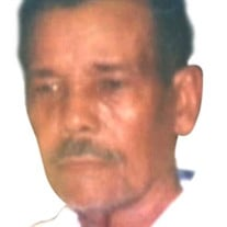 Jose Lino Gonzalez