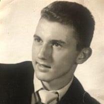 Dominick P. Capotorto