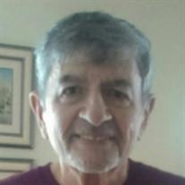 Mr. Paul D. Petrides