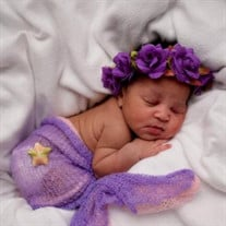 Alaila Jai  Williams