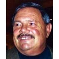 Jerry V.  Borga
