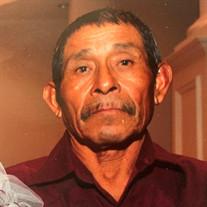 Mr. Marcelino Santibañez Alejo