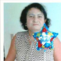 Mirza Patricia Campos Tamayo
