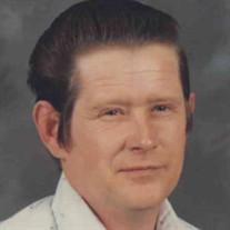 Stephen Mitchell Brink