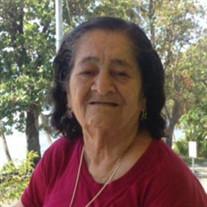 Sara Perez-Estrada