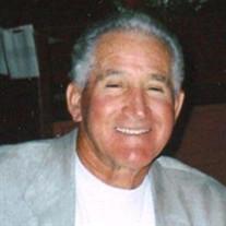 Mr. Remo A. Zegarelli