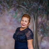 Hilda Saavedra
