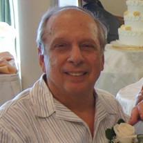 Michael J DiBello