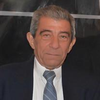 Allan L Nolan