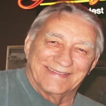 Martin L. Stein