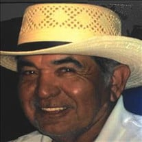 Evaristo Davila, Jr
