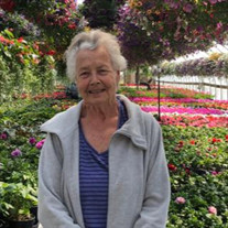 Lois Ann Larscheid