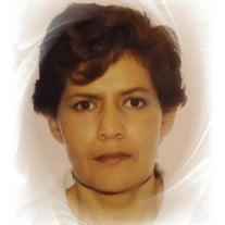 Maria Teresa Arenas Perez