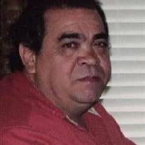 David Allen SeKrenes