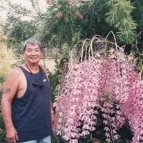 Theodore (Ted) M. Kawamura