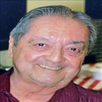 Emilio Jeronimio Delgado, Jr.