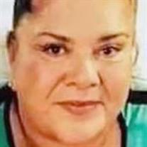 Guadalupe Tapia de Ibarra
