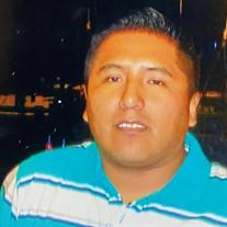 Marco A Puma