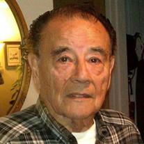 Ray J. Guerra
