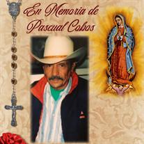Pascual Cobos