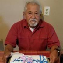Mauricio De Leon, Jr.