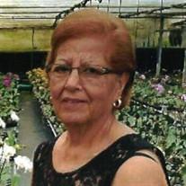 """Consuelo """"Connie"""" Reyna Martinez"""